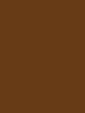 Beautyinstitut Irina Logo_1